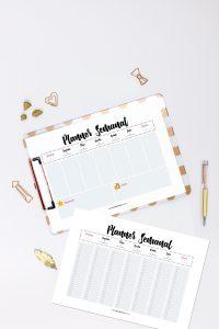 Planner 2021 para Baixar (Design Minimalista) Planner Semanal com 2 versões: versão simples + planner com horários